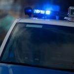 politsei-2-150x150